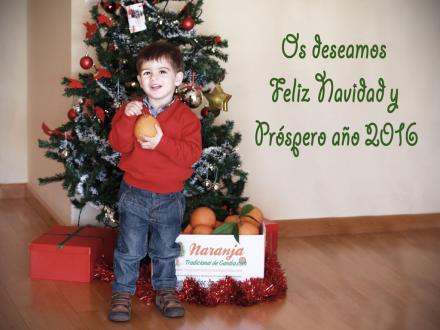 Feliz Navidad y próspero año 2016 de Naranja Tradicional de Gandia